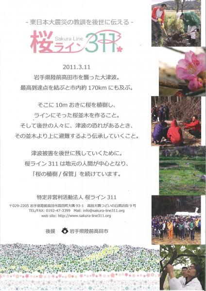 桜ライン①
